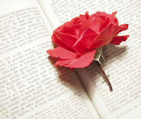 rosa-book